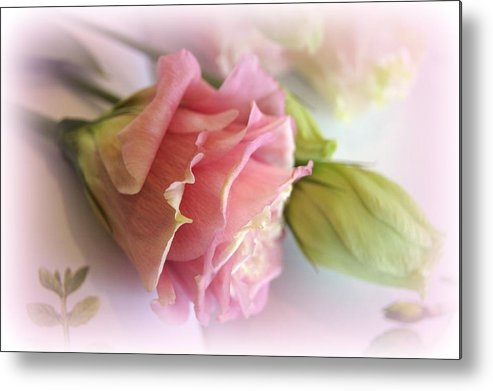 Poetic Metal Print featuring the photograph Pure Poetry by Kathy Bucari