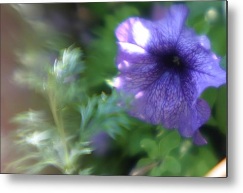 Purple Flower Metal Print featuring the photograph Purple In Monets Garden by Jennifer McDuffie