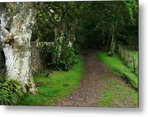 Scotland Metal Print featuring the photograph Shady Lane by Warren Home Decor