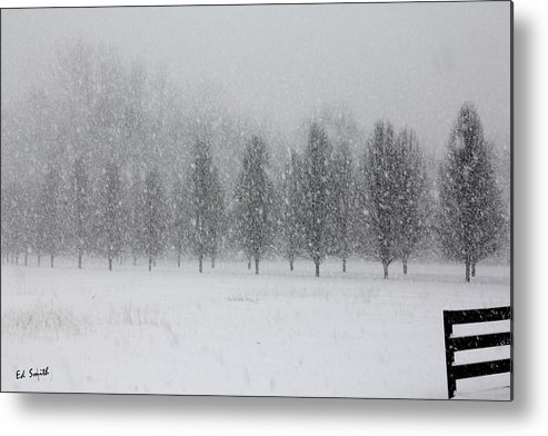 Snow Flakes Metal Print featuring the photograph Snow Flakes by Ed Smith