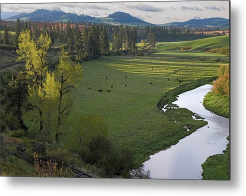 Palouse Metal Print featuring the photograph Spring Morning On Palouse River by Jerry McCollum