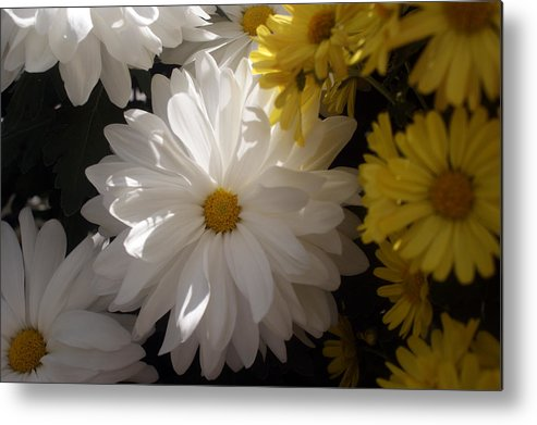 Flower Metal Print featuring the photograph Standing Out In A Crowd by Kat Dee