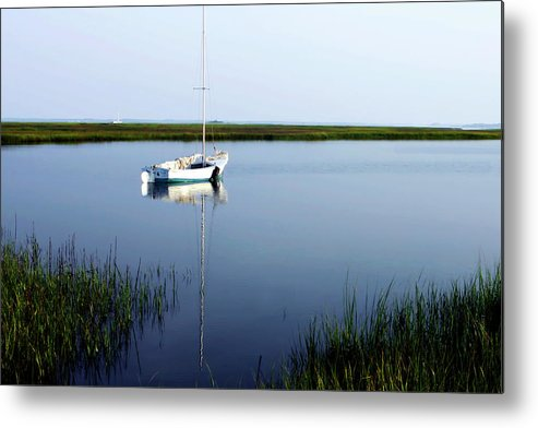 Photo Metal Print featuring the photograph Still Morning 1 by Alan Hausenflock