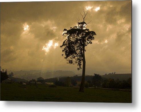 Landscape Storm Rain Trees Light Metal Print featuring the photograph Storm Over Wilmot by Sarah King