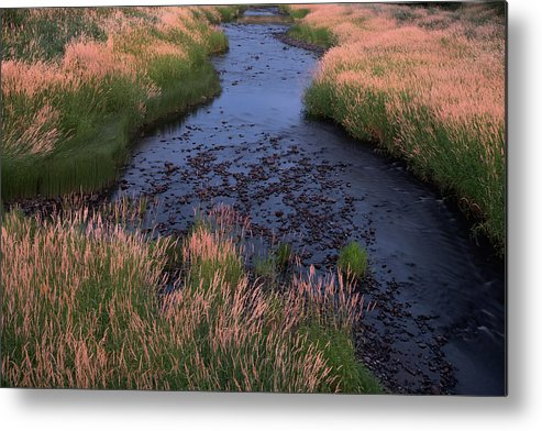Palouse Metal Print featuring the photograph Summer Evening On Palouse River by Jerry McCollum