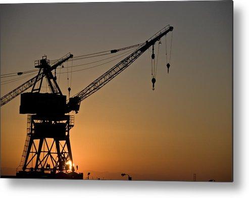 Crane Metal Print featuring the photograph Sunrise by Wes Shinn