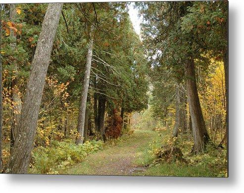 Landscape Metal Print featuring the photograph Tettegouche State Park by Kathy Schumann