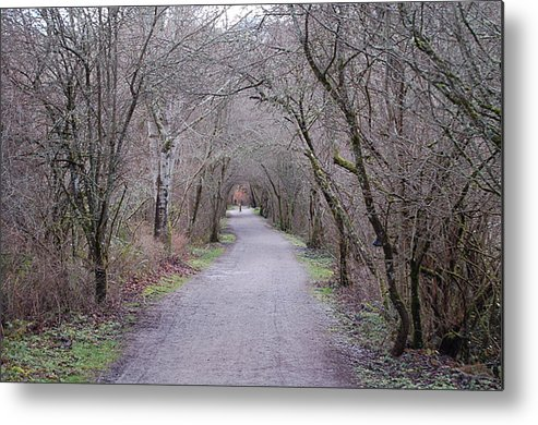 Nature Metal Print featuring the photograph Trail Tunnel by J D Banks
