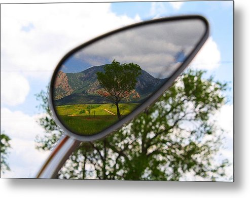 Mirrored Metal Print featuring the photograph Tree Reflections by KatagramStudios Photography