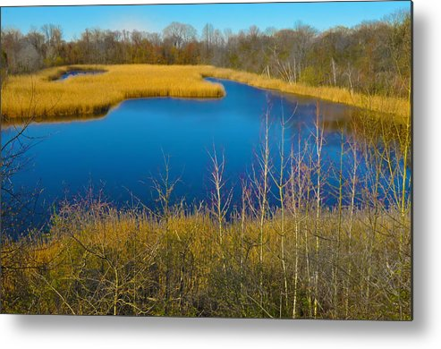 Philadelphia Metal Print featuring the photograph Upper Roxborough Reservoir by Bill Cannon