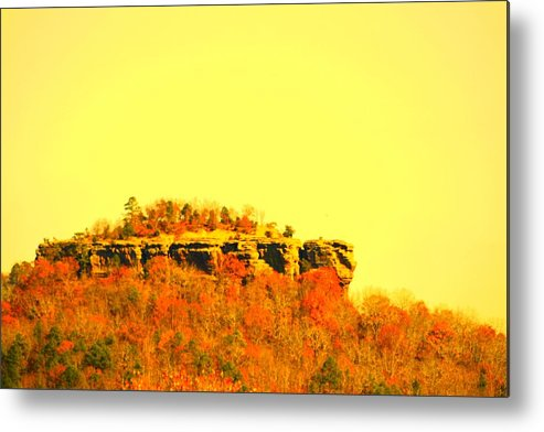 Landscape Metal Print featuring the photograph Colors Of Fall by Lisa Johnston