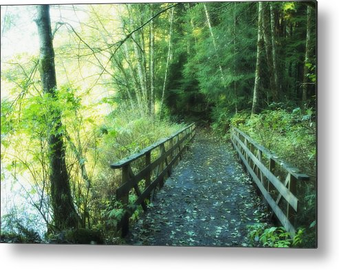 Bridge Metal Print featuring the photograph Rice Lake In North Vancouver by Marlene Ford