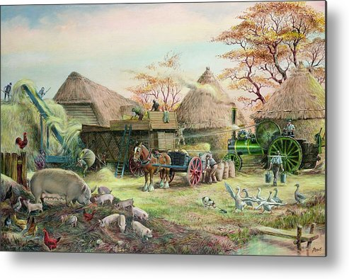 Steam; Thresher; Farmyard Scene; Farm; Yard; Haystack; Farmers; Labourers; Shire Horse; Thatched; Roof; Roofs; Harvest; Family Of Pigs; Pig; Piglets; Sow; Rural; Thatch; Farm Metal Print featuring the painting Threshing In Kent by Dudley Pout