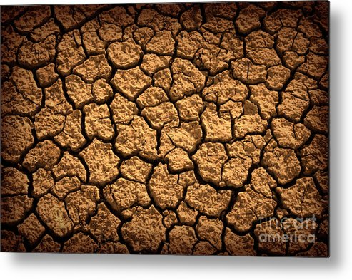 Agriculture Metal Print featuring the photograph Dried Terrain by Carlos Caetano