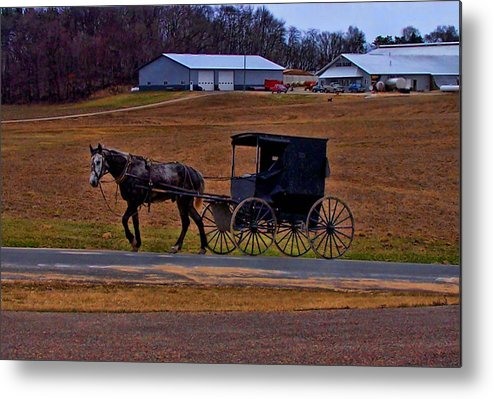 Wisconsin Metal Print featuring the photograph Amish Buggy by Tommy Anderson