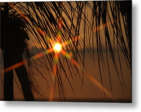 Landscape Metal Print featuring the photograph Beach Sunset by Lisa Gabrius
