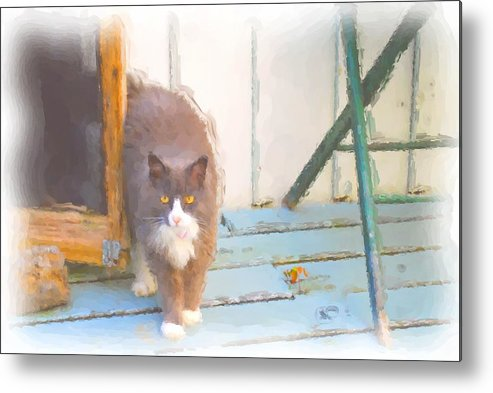 A Grand Pussy Cat Welcome To My Home Metal Print featuring the digital art Bryant Pond Cat by Jonathan Galente