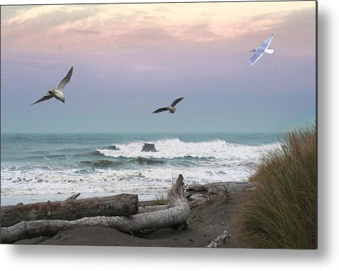 Ocean Shores Metal Print featuring the photograph Ocean Shores O1074 by Mary Gaines