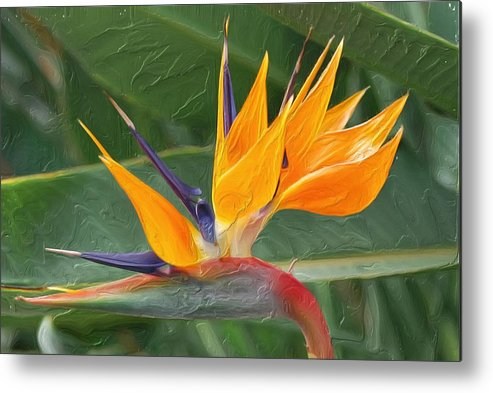 Digital Painting Impasto Styledecor Metal Print featuring the painting Paradise II Painting by Don Wright