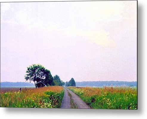 Landscape Metal Print featuring the photograph Road Through The Fields 3 Ae by Lyle Crump