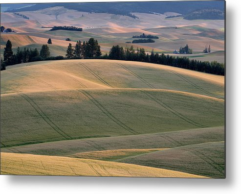 Palouse Metal Print featuring the photograph Rolling Hills Of The Palouse by Jerry McCollum