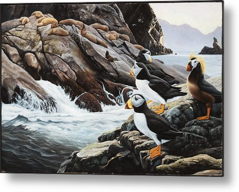 Puffin Painting Bird Sea Lion Boulders Rocks Brown Ocean Walrus Metal Print featuring the painting Sea Lion Island-puffins by Daniel Pierce