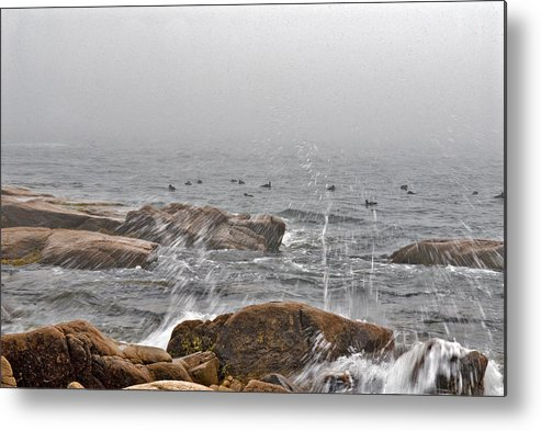 Landscape Metal Print featuring the photograph Sea Spray In Fog by Jack Goldberg
