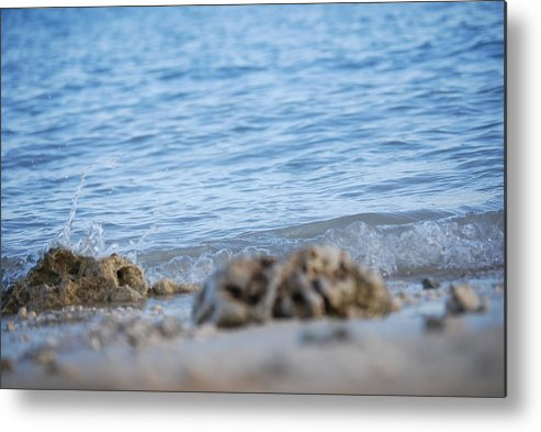 Shore Metal Print featuring the photograph Shore View by Lakida Mcnair