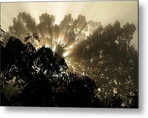 Sunrise Metal Print featuring the photograph Virginia Sunrise by Michael McGowan