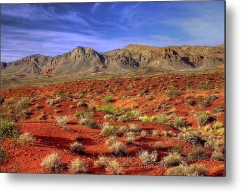 Landscape Metal Print featuring the photograph Waves Of The Desert Sea by Stephen Campbell