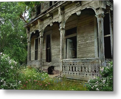 Haunted House Metal Print featuring the photograph Cat House 2 by Tom Straub