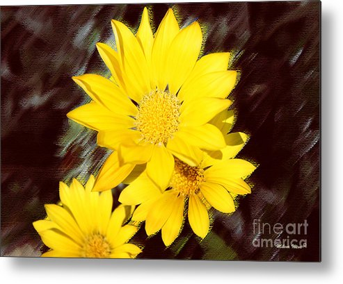 Flower Metal Print featuring the photograph Yellow Flowers by Milena Ilieva