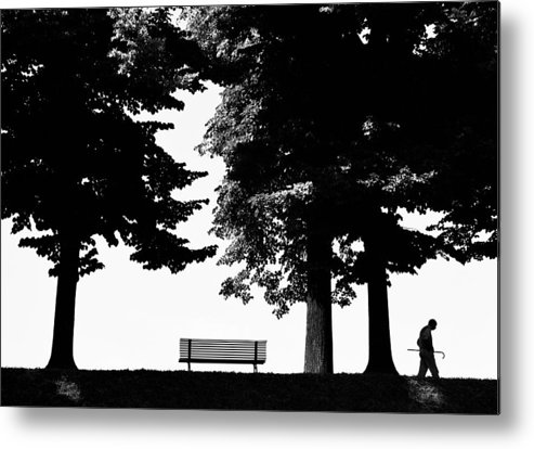 Nature Metal Print featuring the photograph A Walk In The Park by Artecco Fine Art Photography