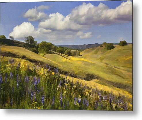 Lupine Metal Print featuring the digital art Cottonwood Canyon by Sharon Foster