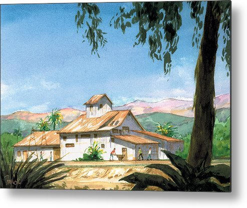Landmark In Carpinteria Metal Print featuring the painting Lima Bean Plant by Ray Cole