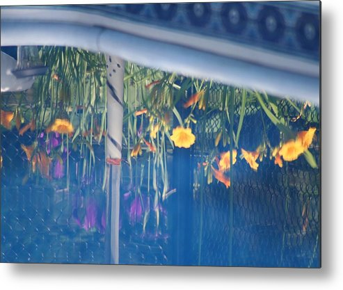 Pool Metal Print featuring the photograph Pool Garden by Amy Holmes