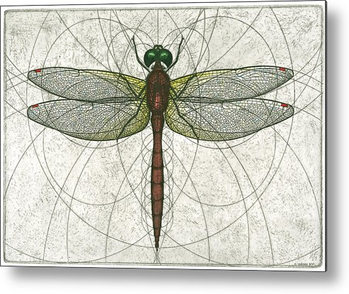 Ruby Metal Print featuring the painting Ruby Meadowhawk Dragonfly by Charles Harden