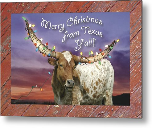 Texas Christmas Cards.Texas Longhorn Christmas Card Metal Print