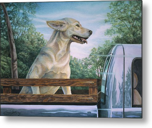 Dog In Truck Metal Print featuring the painting Truck Queen by Craig Gallaway
