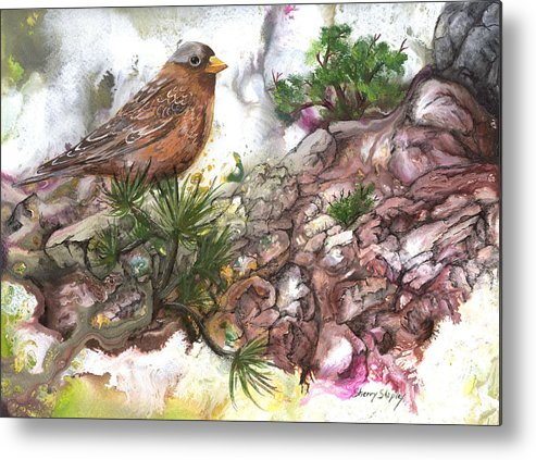 Bird Metal Print featuring the painting Grey Crown Rosy Finch by Sherry Shipley
