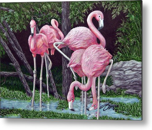 Fuqua Gallery-bev-artwork. Wildlife Metal Print featuring the drawing In The Pink by Beverly Fuqua