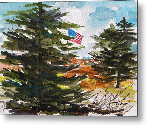 American Flag Metal Print featuring the painting Remote Glory by John Williams