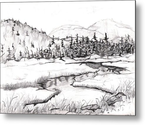 Landscape Metal Print featuring the drawing Stream by Katina Cote