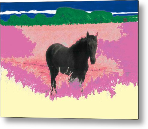 Horse Metal Print featuring the photograph Horse In A Dreamfield 7 by Lyle Crump