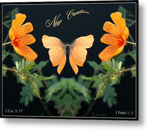 New Creation Metal Print featuring the photograph New Creation by Greg Taylor