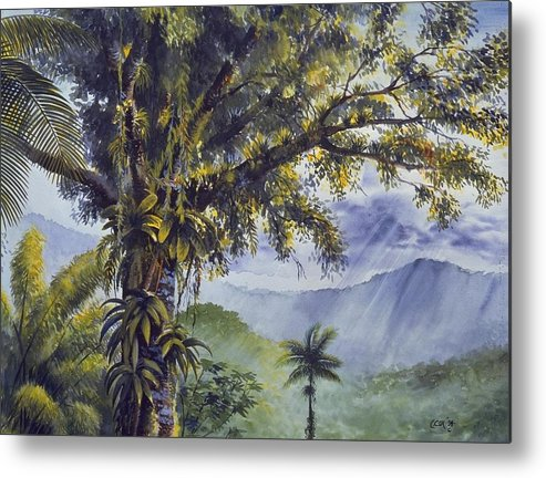 Chris Cox Metal Print featuring the painting Through The Canopy by Christopher Cox