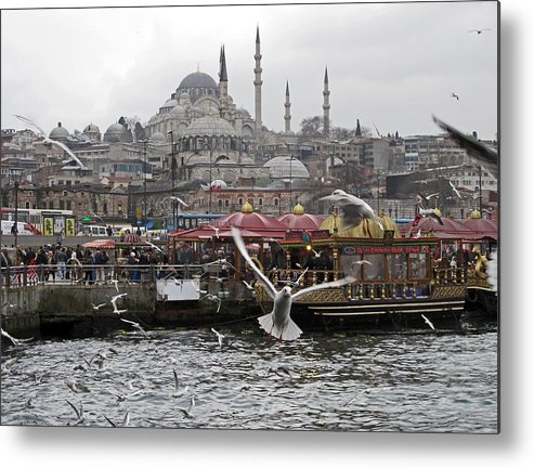 Travel Metal Print featuring the photograph View Of Istanbul by Arvind Garg