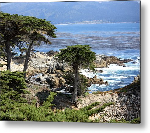 California Metal Print featuring the photograph Carmel Seaside With Cypresses by Carol Groenen