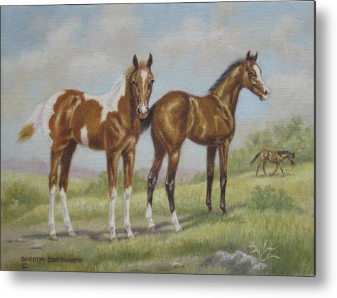 Metal Print featuring the painting Foals In Pasture by Dorothy Coatsworth