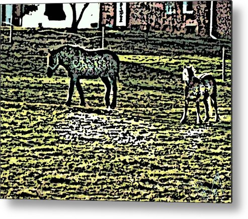 Horses Metal Print featuring the photograph Home Sweet Home by Crystal Webb
